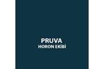 Pruva Horon Ekibi